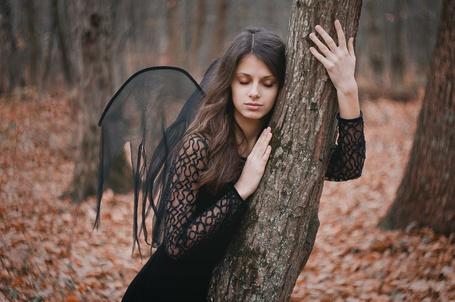 Фото Девушка с крыльями на спине обняла дерево, фотограф Егор Андрущенко