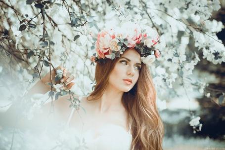 Фото Девушка с венком на голове стоит в окружении цветущих веток, фотограф Яна Крутко
