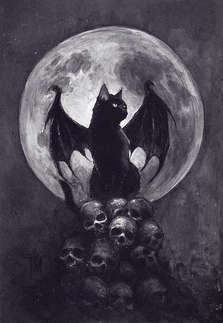 Фото Крылатый черный кот сидит на черепах на фоне полной луны