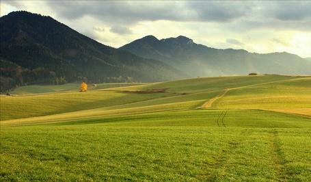 Фото Зеленые поля на фоне гор, by Peter Zibrík (© PolinaPolina), добавлено: 20.05.2014 16:17
