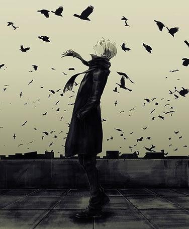 сонник черный ворон зплетнли вылетел принцип