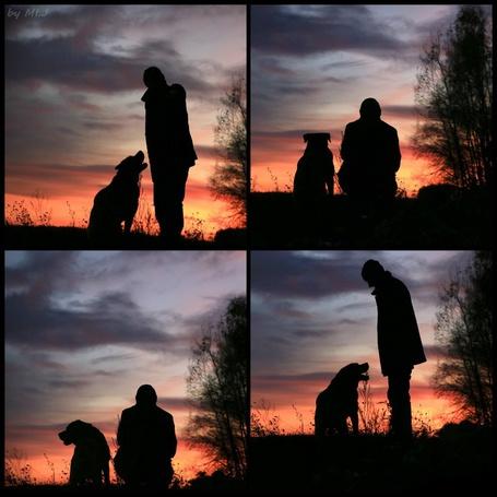 Фото Мужчина с собакой наблюдают за закатом, фоограф Михаил Якуба