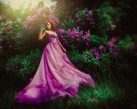 Фото Девушка в фиолетовом платье стоит около цветущего сиренью дерева, by Светлана Беляева