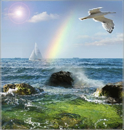 Фото Берег моря, вдалеке плывет яхта, над морем пролетает птица