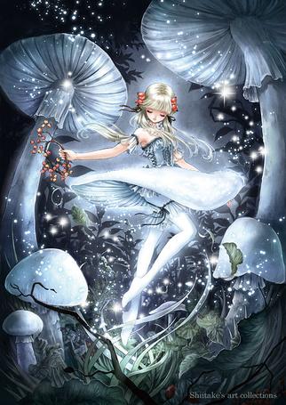 Фото Маленькая фея парит над травой в лесу, художник Shiitake