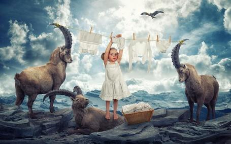 Фото Маленькая девочка развешивает белоснежное белье, рядом с ней сидят три козла и пролетает птица, by John Wilhelm