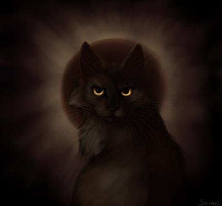 Фото Темная желтоглазая кошка на фоне луны