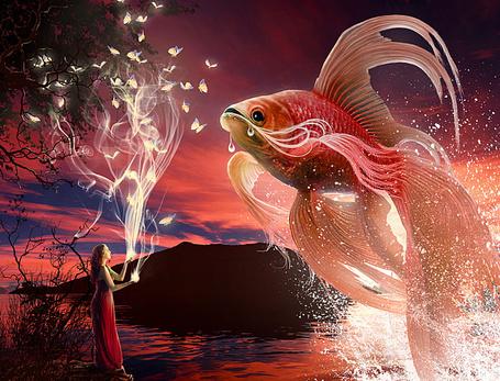 Например, если довелось видеть во сне золотую рыбку , значения могут быть такими:.