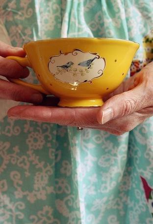 нос бабы яги фото