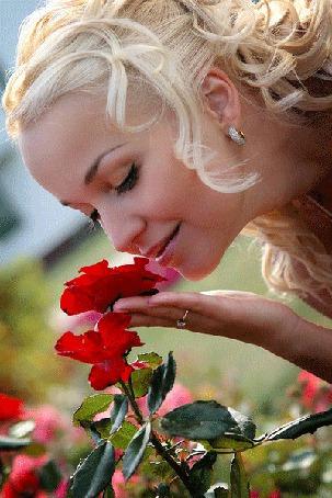 Фото Девушка наклонилась к красным розам