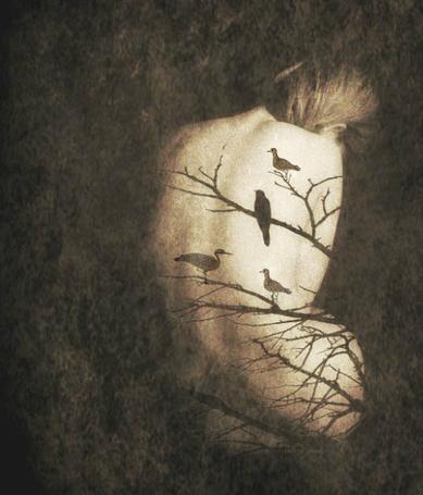 Фото На спине у девушки тень, в виде веток, на котрых сидят птицы