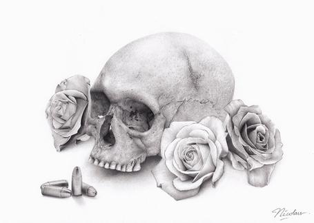 Фото Череп, цветы и пули, by nicofey