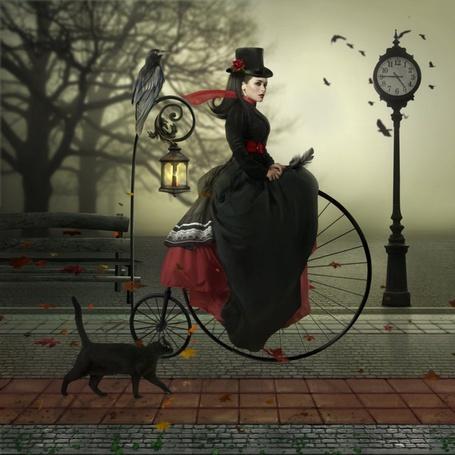 Фото Дама на велосипеде едет по аллее парка, рядом кот