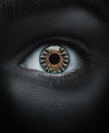 Фото Коричнево-зеленый глаз на черном лице