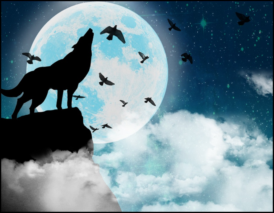 картинки волк и луна рисунок