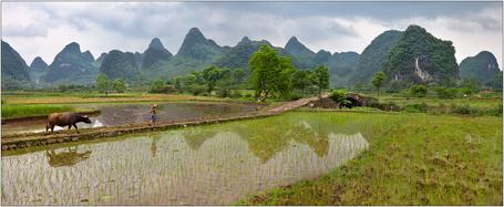 Фото Ребенок идущий по дороге с двух сторон болота, а вдали виднеются горы