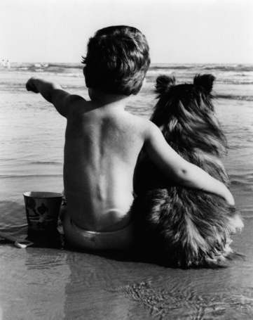 Фото Мальчик с собакой сидит на берегу реки