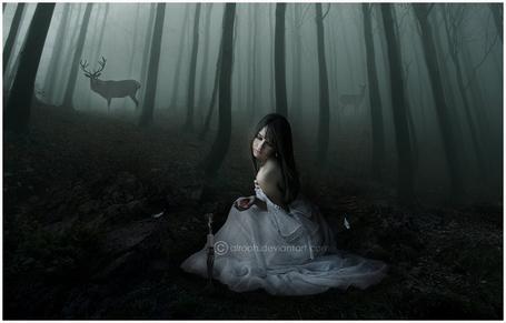 Фото Девушка держит в руке сердце, перед ней меч, в туманном лесу - олени, by ebtihalien