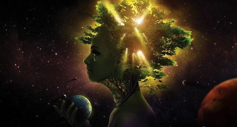 Фото Девушка в космосе, головой которой являет пышное зеленое дерево, сквозь ветки которого просвечивает солнце, держит в руке планету Земля