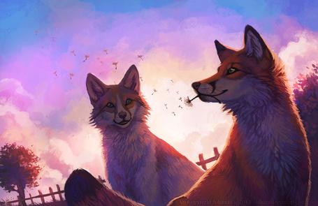 Фото Две лисы на фоне неба, одна из которых держит в пасти одуванчик, художница Lhuin