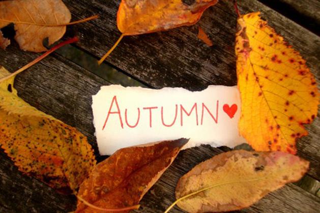 Утро дорогой, картинки осень с надписями на английском