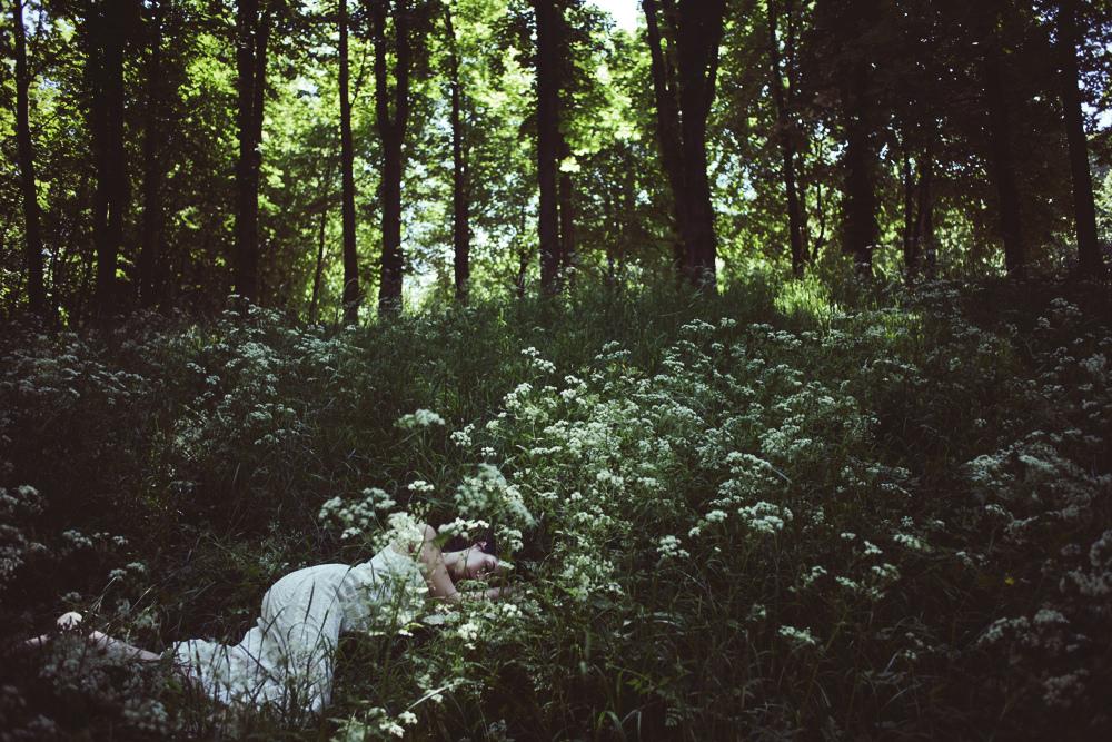 центральный фото спят в лесу обоев серебряного