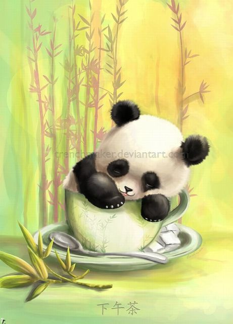 Панды прикольные рисунки, открытки летием женщине