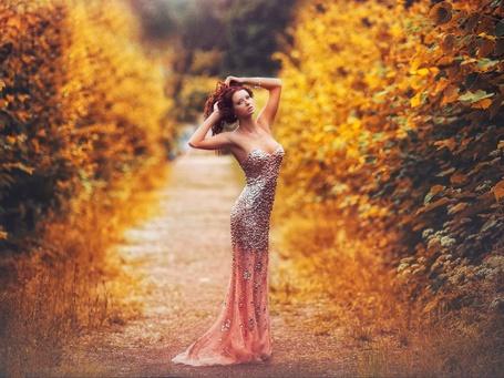 Фото Девушка в вечернем платье стоит посреди пожелтевших деревьев