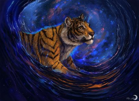 Фото Тигр плывет в морских волнах, позади него виднеется космос, художница flashw