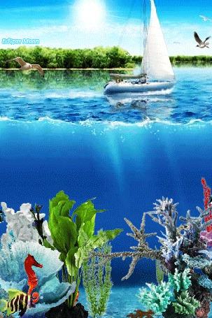 Фото Яхта на море, под водой плавают рыбки