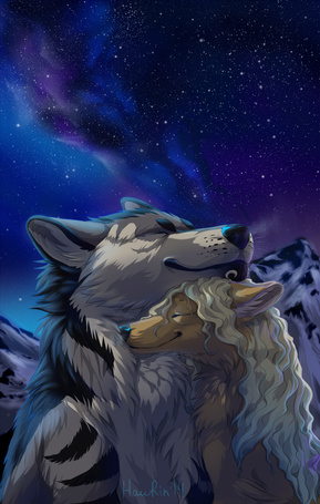 Фото Ласкающиеся волки на фоне звездного ночного неба и снежных гор, художник haurin