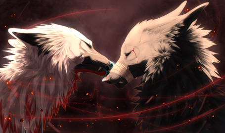 Фото Волк зализывает другому раны, художник NiseSk