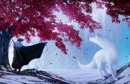 Фото Джон Сноу / Jon Snow стоит под деревом с красной листвой, на него смотрит белый волк Призрак, арт на Игру престолов / Game of Thrones