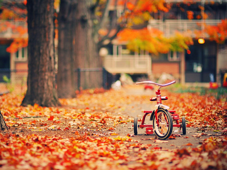 Фото Маленький велосипед на осенней тропинке