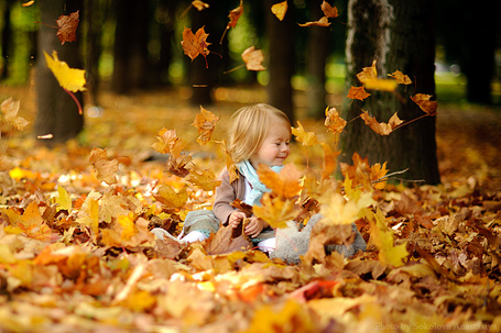 Фото Маленькая девочка в осенних листьях, фотограф Анастасия Соколова / Anastasia Sokolova