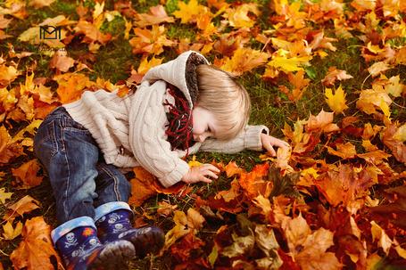 Фото Мальчик лежит на осенних кленовых листьях, фотограф Марина Дорощенкова / Marina Doroschenkova