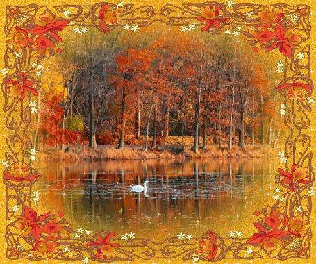 Фото Осенняя природа, изображена в рамке
