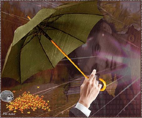 Фото Зонт в мужской руке, женское лицо и еж, роющийся в куче желтых, осенних листьев (Наталья)