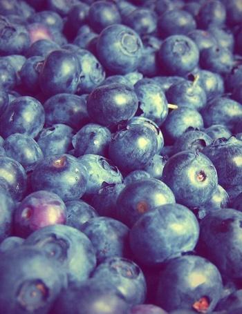 Фото Множество ягод черники