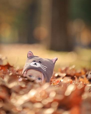 Фото Ребенок в шапке в виде кошки спрятался за охапкой пожелтевшей листвы