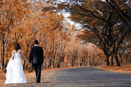 Фото Пара молодоженов, идущая по асфальтовой дороге, усыпанной осенними листьями