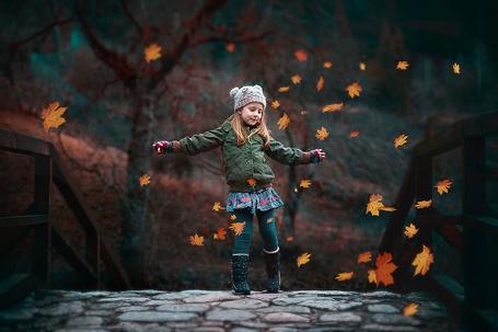 Фото Девочка идет по мостику, падают осенние листья