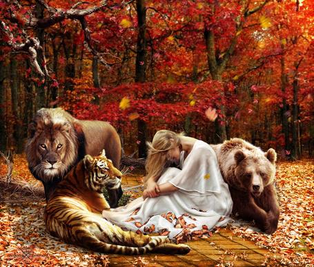 Фото Девушка сидит в окружении тигра, льва и медведя на фоне осеннего леса, by robhas1left