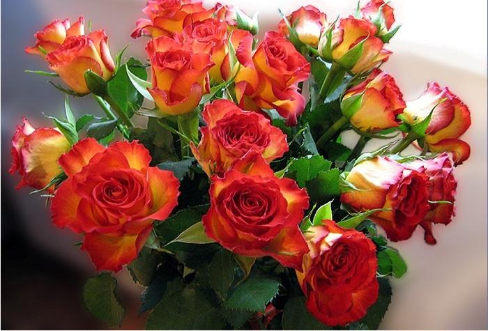 этой букет цветов флэш открытки заказами помогаете