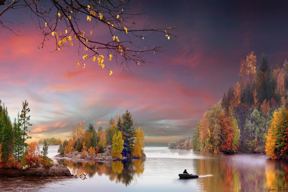 Фото Человек на надувной моторной лодке плывет по реке, окруженной деревьями с осенней раскраской листьев и взлетающими с воды утками, над ним розовое от восхода солнца небо, фотограф IGOR ZENIN / Игорь Зенин