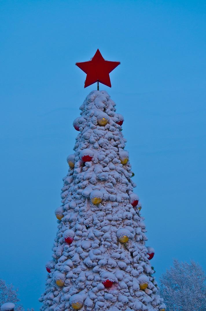 Фото Новогодняя заснеженная ель, украшенная игрушками, с красной звездой на верхушке