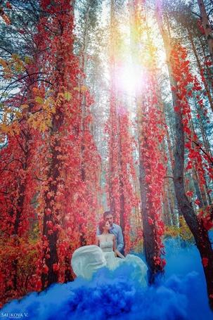 Фото Мужчина с девушкой стоят в дыму в окружении осенней листвы, фотограф Виктория Саликова