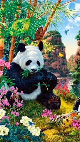 Фото Панда сидит на берегу водоема. Рядом растет бамбук, на дальнем плане горы покрытые травой, автор анимации Brus777