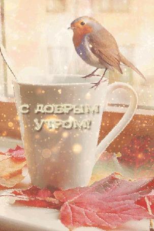 Фото На подоконнике птичка сидит на кружке, лежат кленовые листья. Надпись С Добрым Утром!
