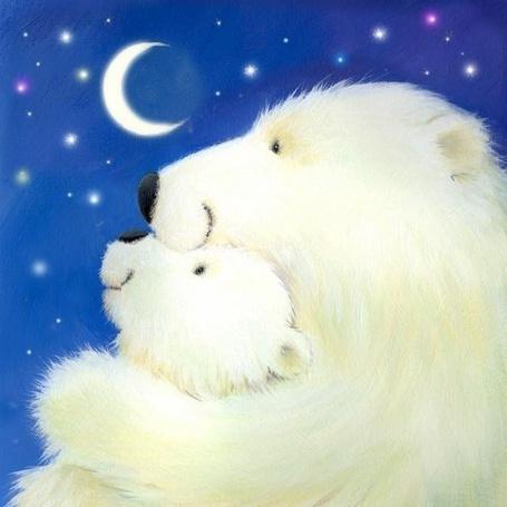 Фото Белый медведь обнимает своего малыша и они оба любуются ночным небом, by Alison Edgson